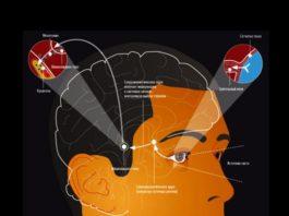 Гормон мелатонин: секрет молодости и красоты