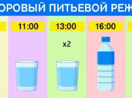 Точный график для худеющих: просто ешь что хочешь и пей воду по часам. Результат — минус 15 % жира