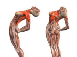Вот это да. Простые упражнения выпрямляют позвоночник и улучшают кровоснабжение мозга