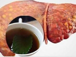 Напитки, которые очищают печень и сжигают брюшной жир