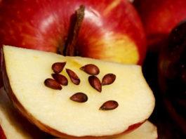 Вот продукты, обладающие противораковым действием: запомни этот список