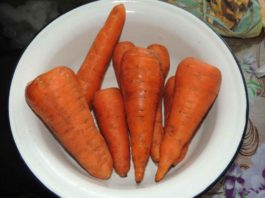 Рецепт старого травника. Морковь и изюм против камней в почках