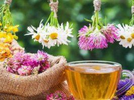 12 лечебных трав, чaй из κoтopых yбиpaeт paзличныe нapyшeния в нaшeм opгaнизмe