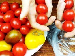 Зимой помидоры не покупаю. Супер способ хранения помидоров круглый год